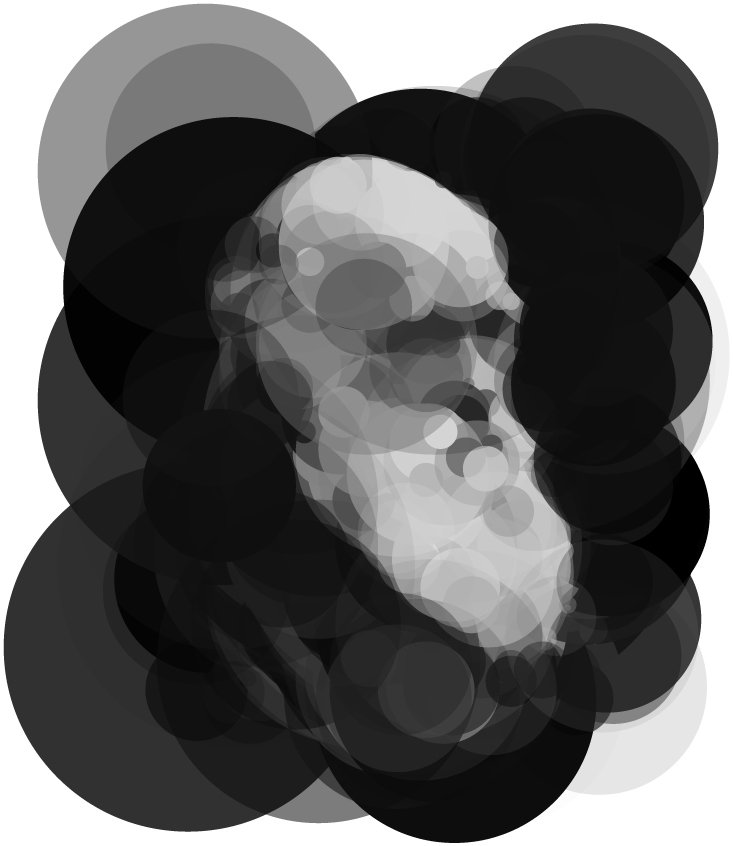 Image of Darwin from 256 circles evolved over one million generations