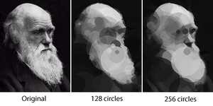 Evolved images of Charles Darwin